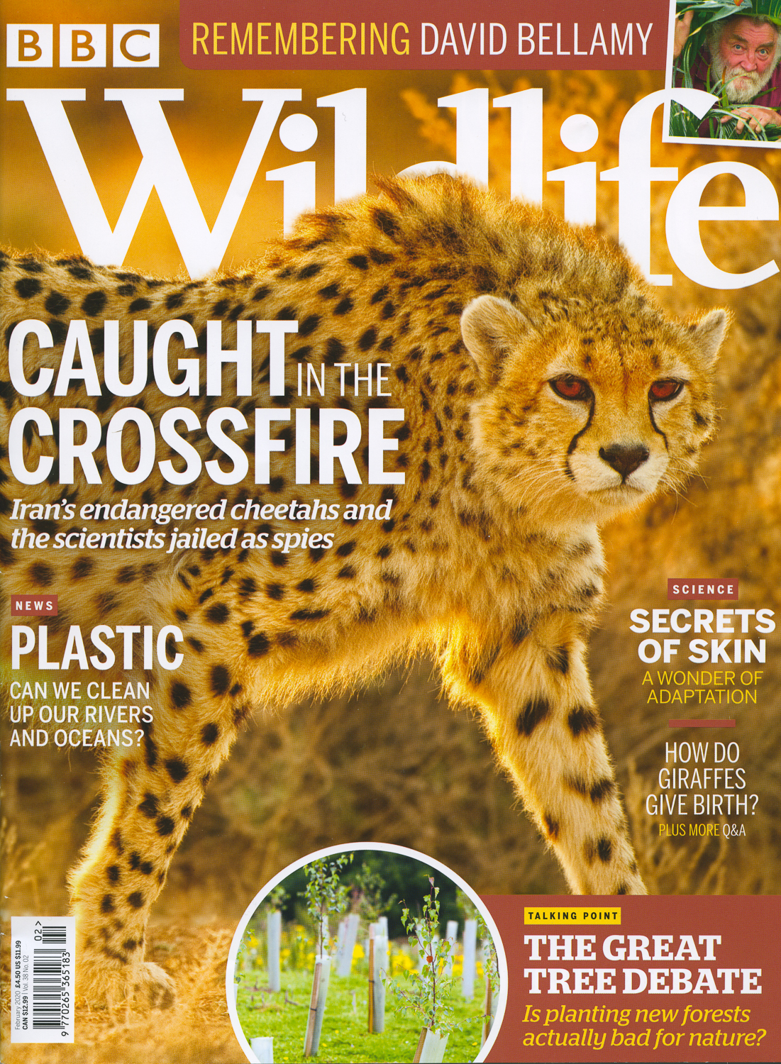 "BBC Wildlife ""Caught in the Crossfire"" February 2020"