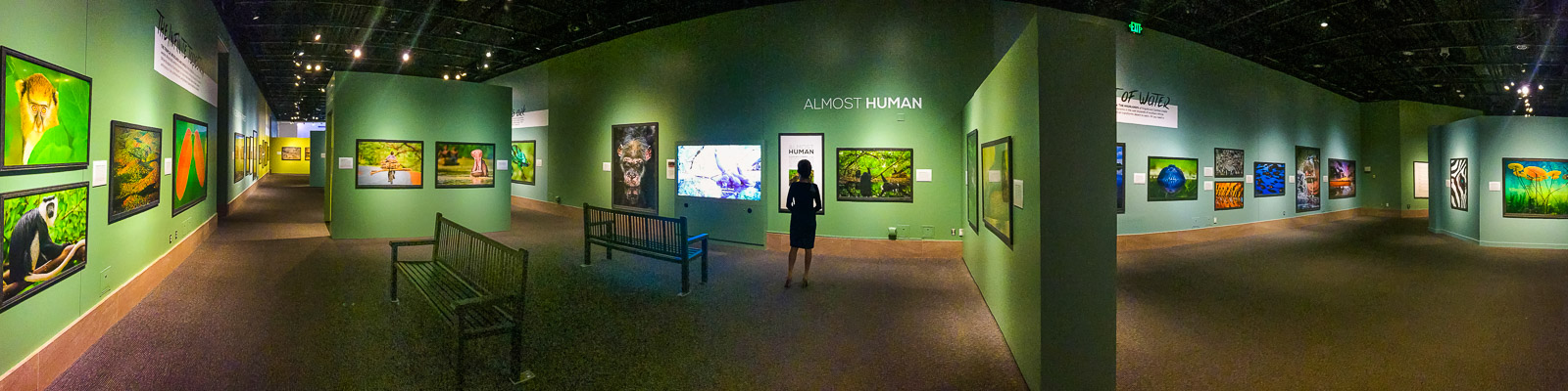 Frans Lanting's Into Africa exhibit at the Smithsonian National Museum of Natural History, Washington D.C., USA