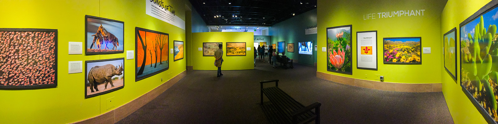 Visitors at Frans Lanting's Into Africa exhibit at the Smithsonian National Museum of Natural History, Washington D.C., USA