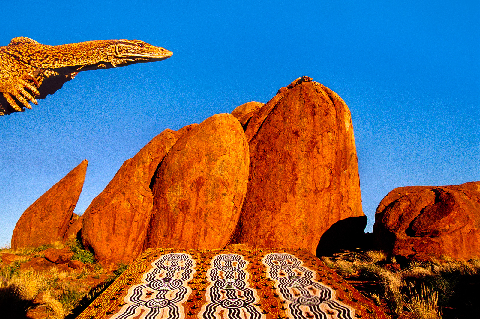 Goanna and aboriginal art, Central Australia