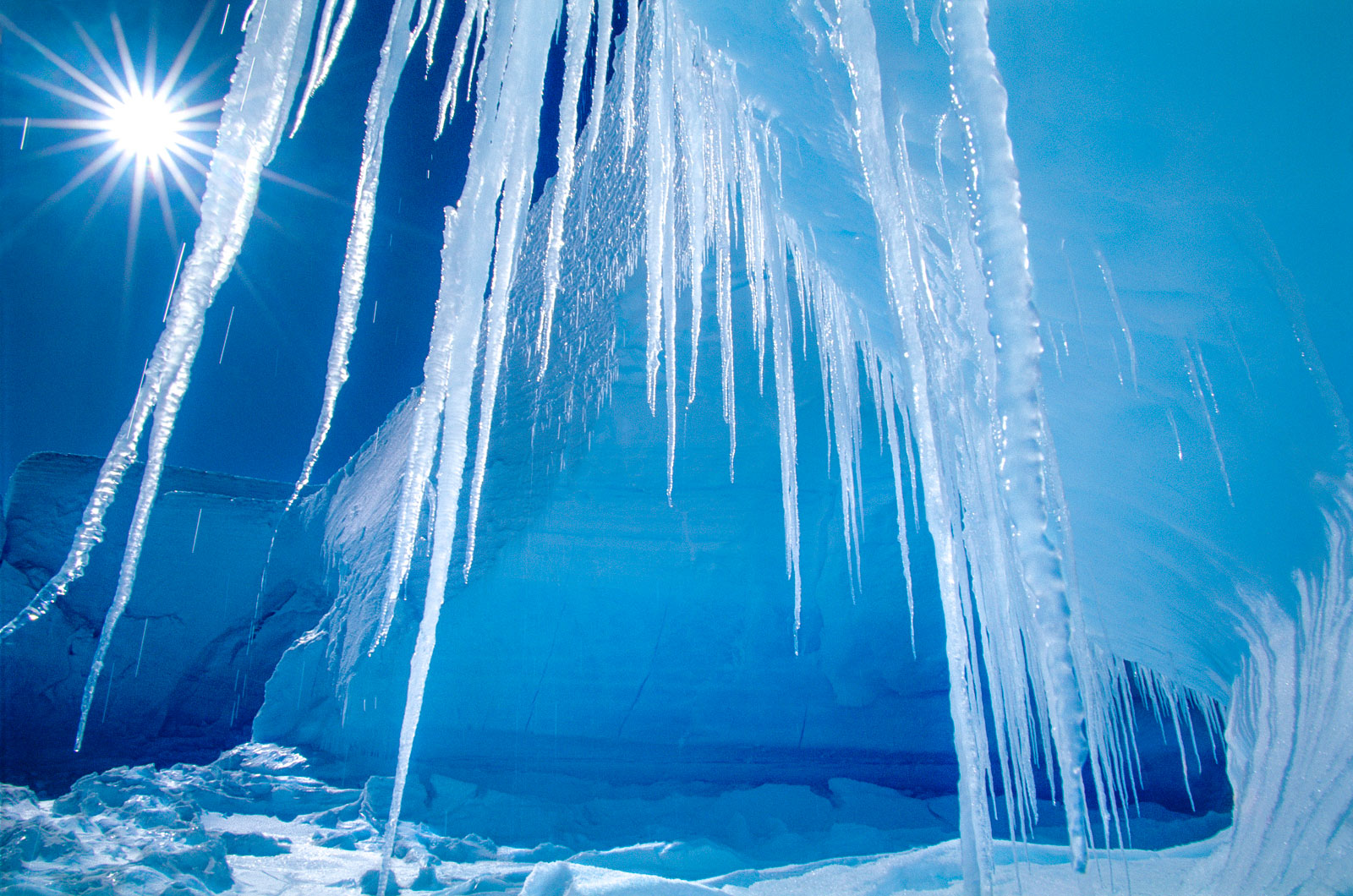 Icicles and sun, Alta Bay, Antarctica