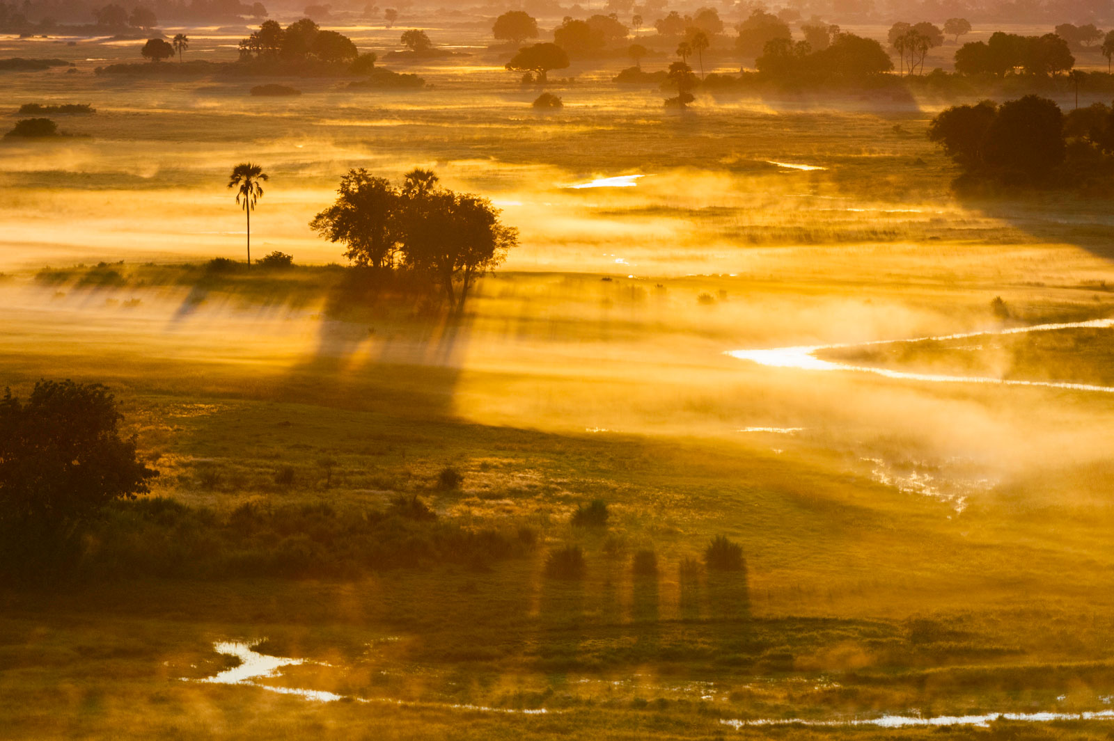 Mist at sunrise, Okavango Delta, Botswana