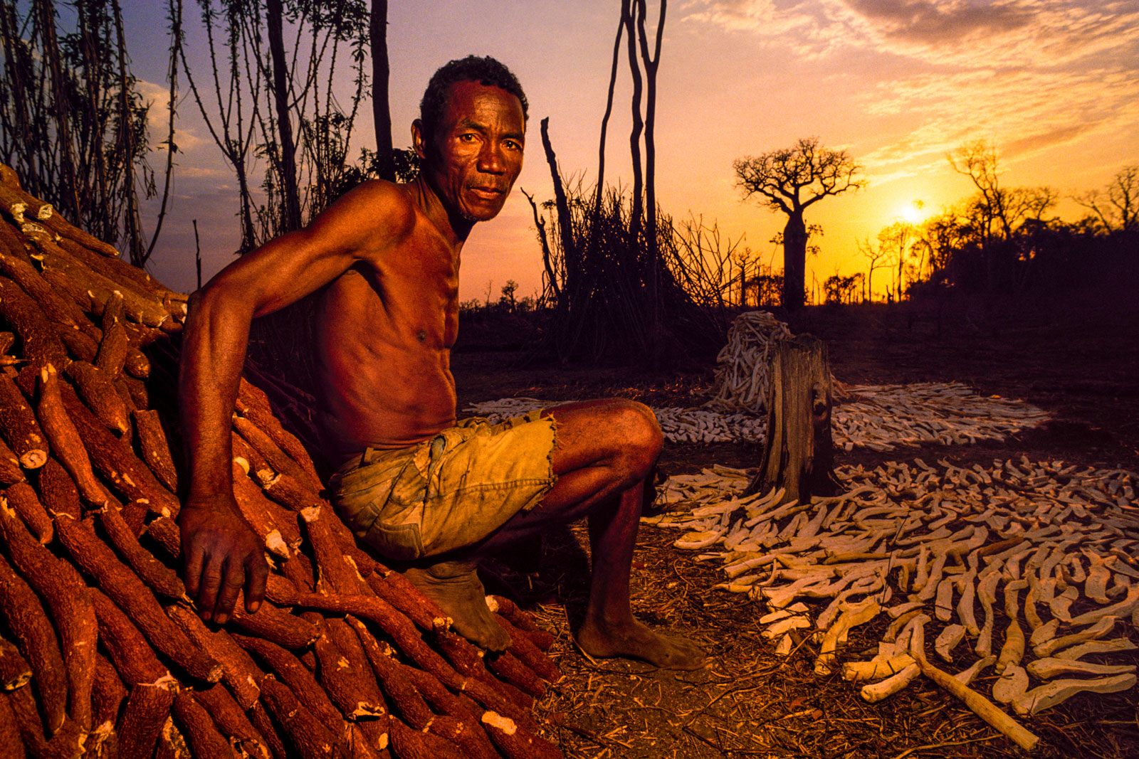 Squatter with manioc, Madagascar