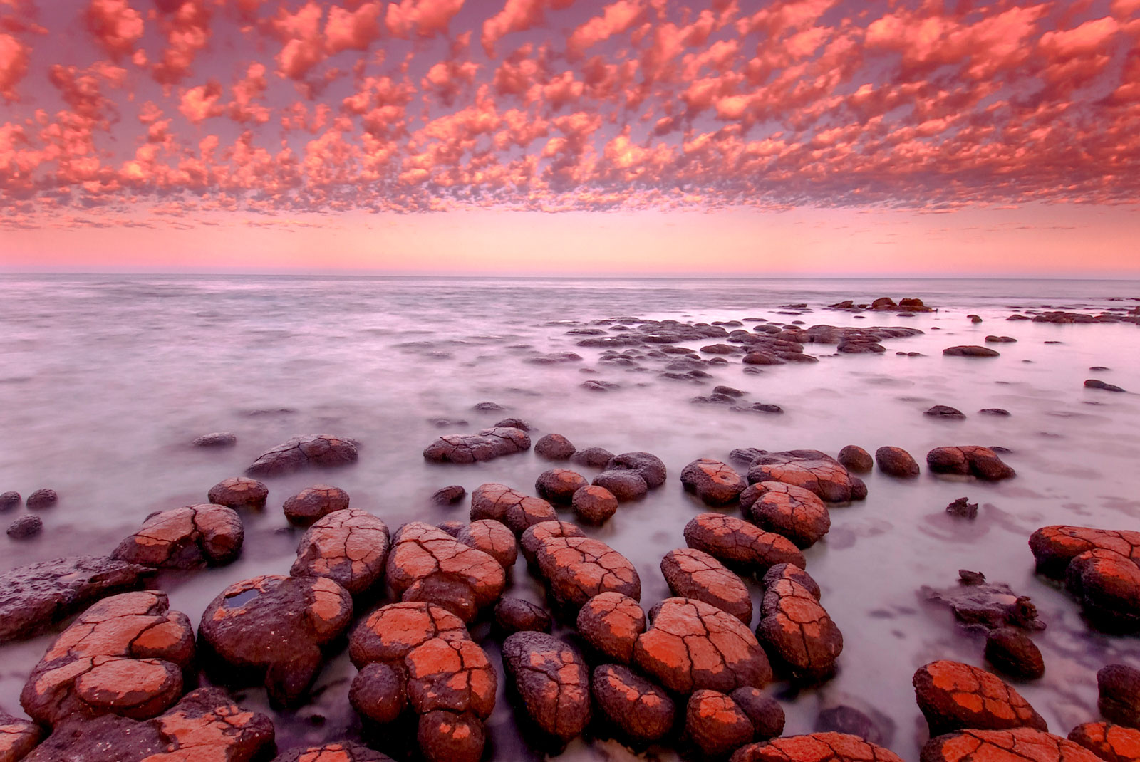 Stromatolites at dawn, Shark Bay, Western Australia