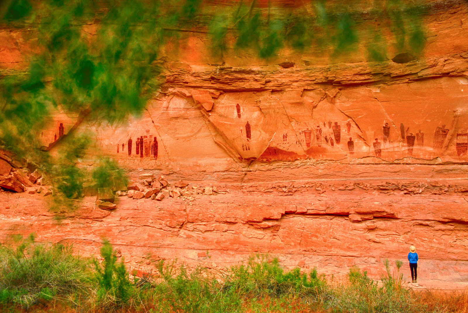 Visitor looking at rock art, Horseshoe Canyon, Canyonlands National Park, Utah, USA